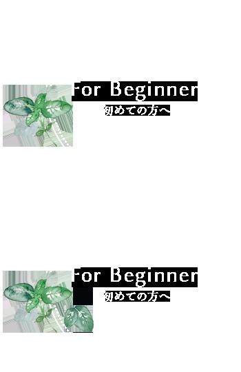 banner_beginner